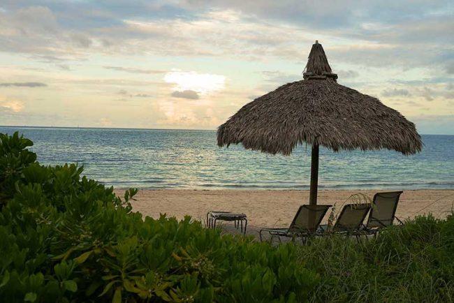 14 Best North Florida Beaches (Gulf Coast, Navarre, Etc.)