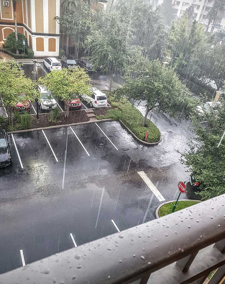 Florida Thunder Storm and Pouring Rain