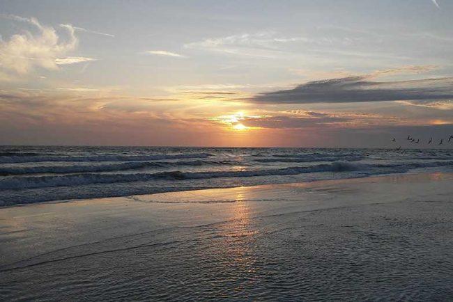 12 Best Beaches in Venice Florida