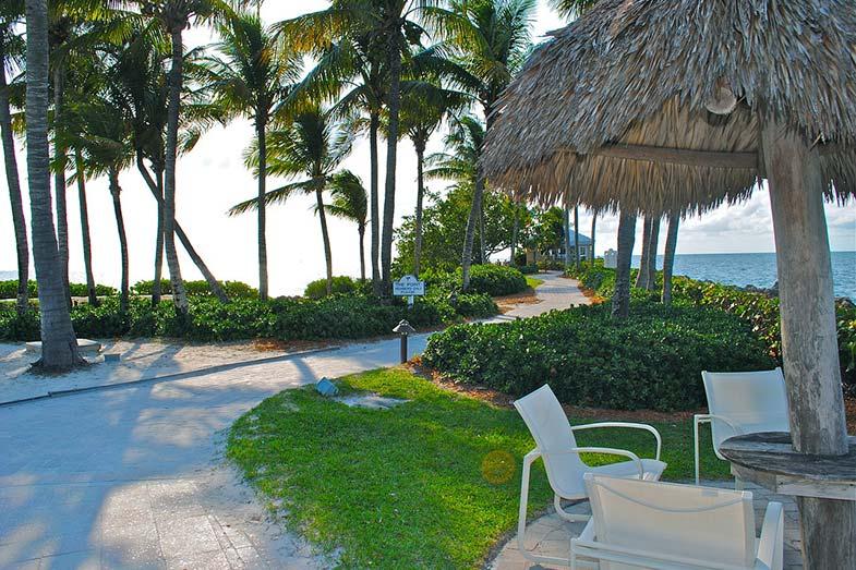 Florida Keys Resort and Palm Trees