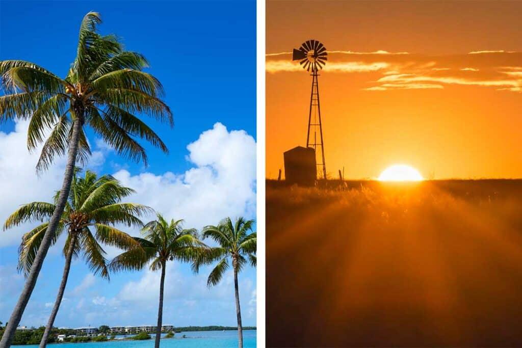 Florida vs Texas