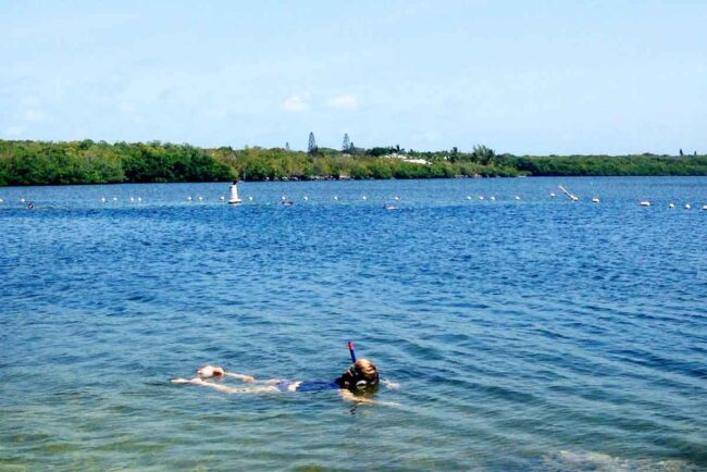 Cannon Beach, Key Largo, Florida (Full Review)