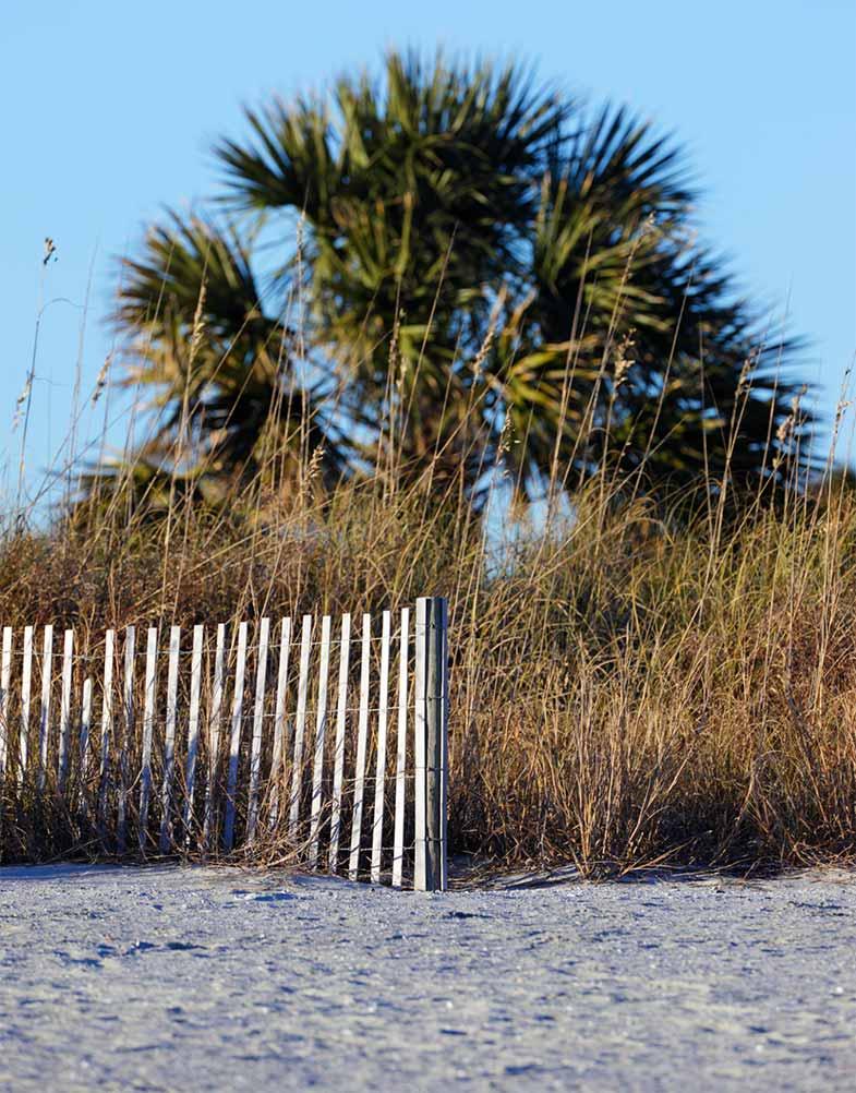 Palmetto Dunes, South Carolina